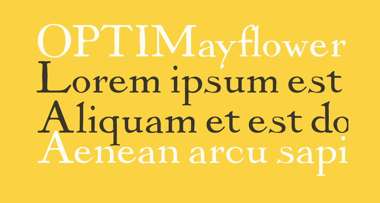 OPTIMayflower