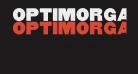 OPTIMorgan-Two