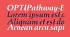 OPTIPathway-ExtraBoldIta