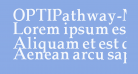 OPTIPathway-Medium