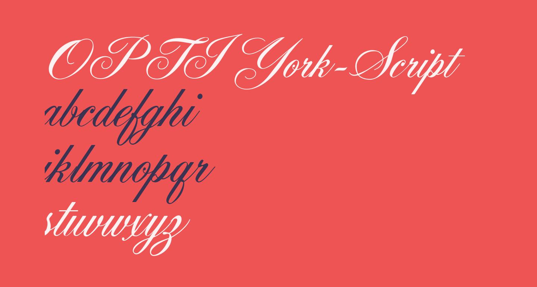 OPTIYork-Script