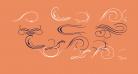 Ornament ScrollsAndFlorishes