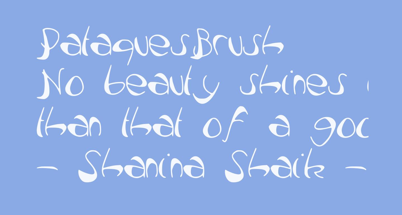 PataquesBrush