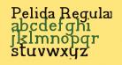 Pelida Regular