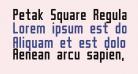 Petak Square Regular