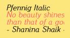 Pfennig Italic