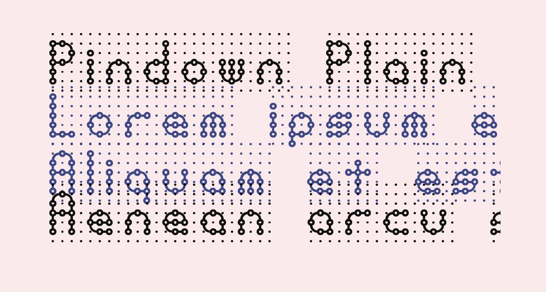 Pindown Plain BRK