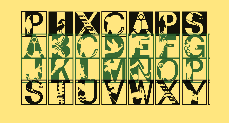 PixCaps