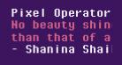 Pixel Operator Mono Bold