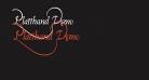 Platthand Demo