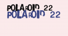 Polaroid 22