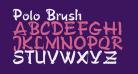 Polo Brush