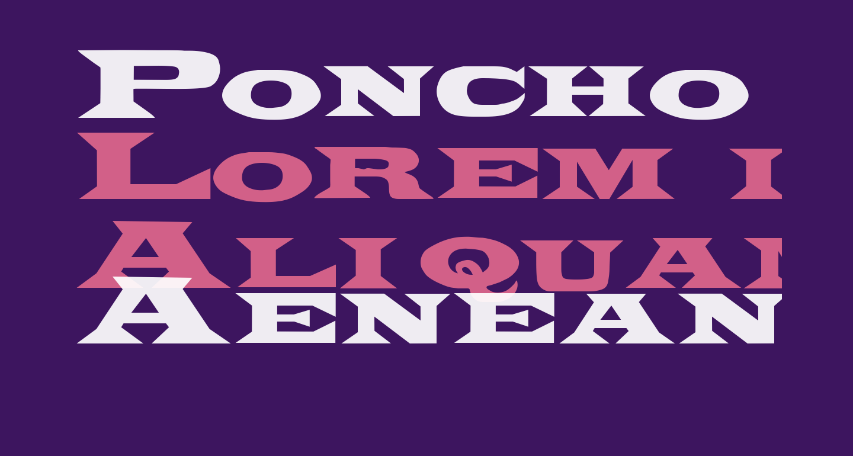 Poncho Regular