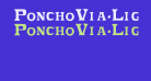PonchoVia-Light Regular