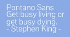 Pontano Sans