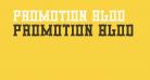 Promotion Blod