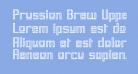 Prussian Brew Upper
