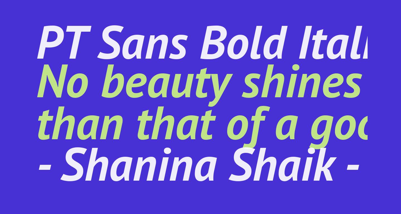 PT Sans Bold Italic