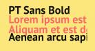 PT Sans Bold