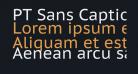 PT Sans Caption