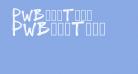 PWBoldToon