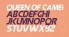 Queen of Camelot Italic