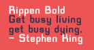 Rippen Bold