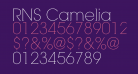 RNS Camelia