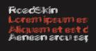 RoadSkin