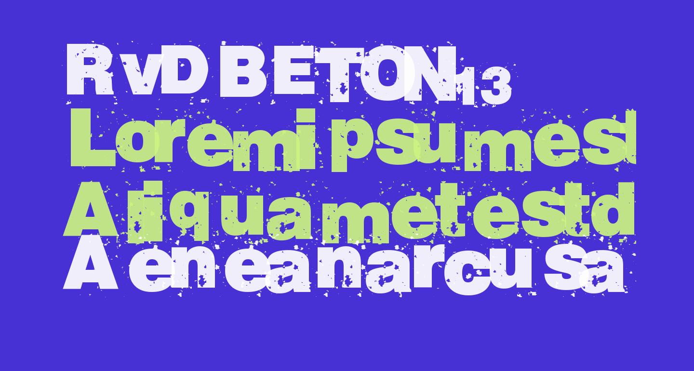 RvD_BETON13