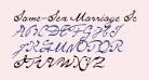 Same-Sex Marriage Script LDO