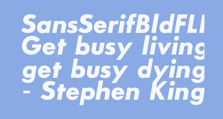 SansSerifBldFLF-Italic