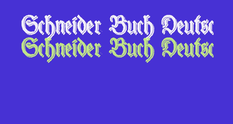 Schneider Buch Deutsch Shadow Two