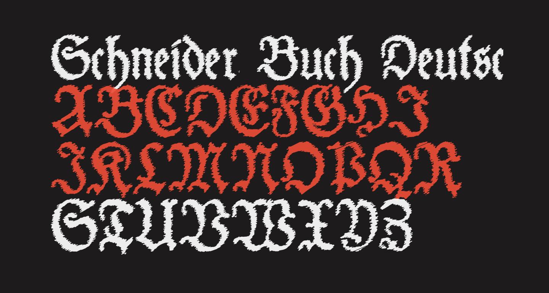 Schneider Buch Deutsch Trash Free