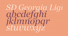 SD Georgia Light Demo Italic