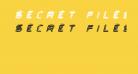 Secret Files II Italic