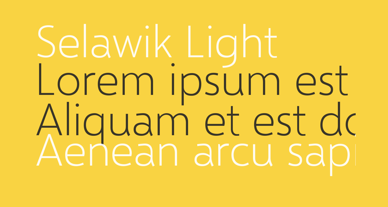 Selawik Light