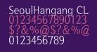 SeoulHangang CL