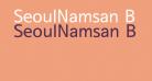 SeoulNamsan B