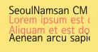 SeoulNamsan CM