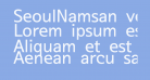 SeoulNamsan vert
