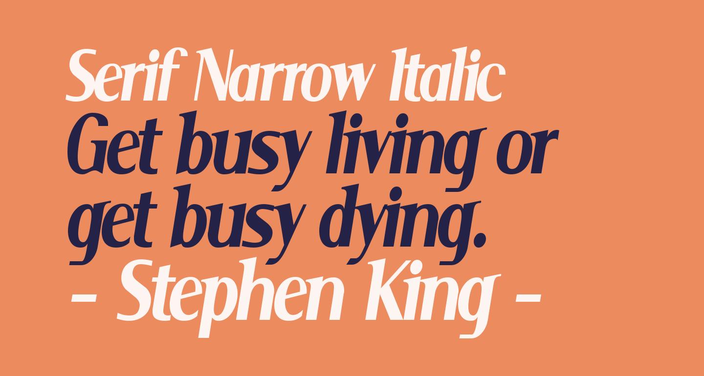 Serif Narrow Italic