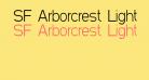 SF Arborcrest Light