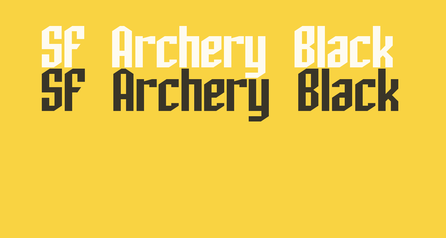 SF Archery Black
