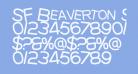 SF Beaverton SC Medium