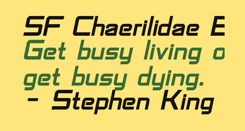 SF Chaerilidae Bold Oblique