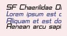 SF Chaerilidae Oblique