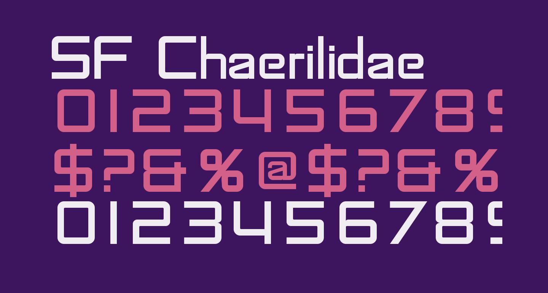 SF Chaerilidae