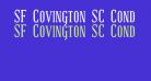 SF Covington SC Cond Bold