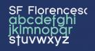 SF Florencesans Bold